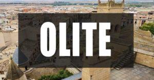 Que ver en Olite